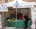Sagra_Carciofo_2014-03